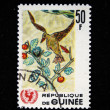 GUINEA - CIRCA 1966: A stamp printed in Guinea shows Childrens Drawing - Bird, circa 1966 — Stock Photo