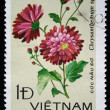VIETNAM- CIRCA 1978: A stamp printed in Vietnam shows image of a Chrysanthemum — Stock Photo
