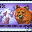 Stock Photo: MONGOLI- CIRC1978: stamp printed in Mongolishows Chukchi reindeer dog beater, one stamp from series, circ1978
