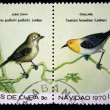 CUBA - CIRCA 1970: A stamp printed in Cuba shows the Bird Cuban Vireo - Vireo gundlachii and Yellow-headed Warbler - Teretistris fernandinae, stamp is from the series, circa 1970CUBA - CIRCA 1970: A s — Stock Photo #12161571