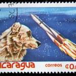 NICARAGUA - CIRCA 1982: A stamp printed in Nicaragua shows Dog-cosmonaut Laika, circa 1982 — Stock Photo #12161681