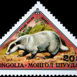 MONGOLI- CIRC1973: stamp printed in Mongolishows EuropeBadger - Meles meles, series, circ1973 — Stock Photo #12165006