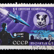USSR - CIRCA 1961: A stamp printed in the USSR commemorating Fifth soviet spaceship-satilate and show dog Zvyozdochka (Small Star), circa 1961 — Stock Photo