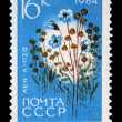 """USSR - CIRCA 1964: A stamp printed in USSR (Russia) shows a agricultural crop with inscription """"Flax (Linum usitatissimum)"""", from the series """"Agricultural crops bred by Soviet scientist — Stock Photo"""