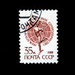 UNION OF SOVIET SOCIALIST REPUBLICS - CIRCA 1988: A stamp printed in the USSR shows image of a person and the Earth, series, circa 1988 - Stock Photo