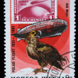 MONGOLIA - CIRCA 1981: A stamp printed in the Mongolia shows an old stamp, zeppelin and Golden Eagle, is devoted Polar flight of 1931 year, series, circa 1981 — Lizenzfreies Foto