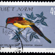 VIETNAM - CIRCA 1978: A stamp printed in Vietnam shows Garrulax chinensis or black-throated laughingthrush, series devoted to the songbirds, circa 1978 — Stock Photo