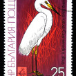 BULGARIA - CIRCA 1981: A stamp printed in Bulgaria shows bird Great Egret - Ardea alba, circa 1981 — Lizenzfreies Foto
