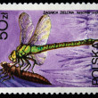 Stock Photo: POLAND - CIRC1983: stamp printed in Poland shows dragonfly Aeshnviridis, circ1983