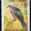 VIETNAM - CIRCA 1978: A stamp printed in Vietnam shows Garrulax chinensis or black-throated laughingthrush, series devoted to the songbirds, circa 1978 — Stock Photo #12165270