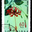 VIETNAM - CIRCA 1978: A stamp printed in Vietnam shows rosemallow - Hibiscus Schizopetalus, series, circa 1978 - Stock Photo