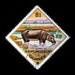 GUINEA - CIRCA 1975: A stamp printed in Guinea shows hippopotamus - Hippopotamus amphibius, circa 1975 — Stock Photo