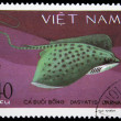 VIETNAM - CIRCA 1980s: A stamp printed by Vietnam shows fish Honeycomb stingray - Dasyatis uarnak, stamp is from the series, circa 1980s — Stock Photo