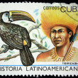 Stock Photo: CUB- CIRC1987: stamp printed in Cubshows Indians Tiibiricfrom Brazil and bird White-throated Touc- Ramphastos cuvieri, circ1987