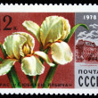 "USSR - CIRCA 1978: A stamp printed in USSR shows a iris ""The anniversary of Lenin"" and building of theatre, series, circa 1978 — Stock Photo"