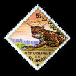GUINEA - CIRCA 1975: A stamp printed in Guinea shows Leopard - Panthera pardus, circa 1975 — Stock Photo