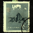 CHINA - CIRCA 1958: A stamp printed in China shows Megaloceros, circa 1958 — Stock Photo