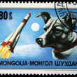 MONGOLIA - CIRCA 1978: A stamp printed in Mongolia shows Mixed-breed dog, one stamp from series, circa 1978 - Stock Photo
