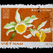 VIETNAM - CIRCA 1976: A stamp printed in Vietnam shows orchid flowers, circa 1976 — Stock Photo