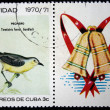 CUBA - CIRCA 1970: A stamp printed by Cuba shows the Bird Oriente Warbler - Teretistris fornsi, stamp is from the series, circa 1970 - Stock Photo