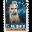 Stock Photo: USRR - CIRC1966: stamp printed in USSR shows Otto Schmidt, circ1966