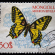 MONGOLIA - CIRCA 1963: A stamp printed in Mongolia shows butterfly with the inscription — Stock Photo