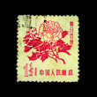 CHINA - CIRCA 1950s: A stamp printed in China shows peony, circa 1950s - 图库照片