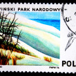 POLAND - CIRCA 1976: A stamp printed in Poland shows view of peoples national park Slowinski and seagul, series, circa 1976 — Lizenzfreies Foto