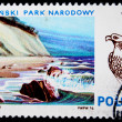 POLAND - CIRCA 1976: A stamp printed in Poland shows view of peoples national park Wolinski and falcon, series, circa 1976 — Stock Photo