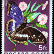 HUNGARY - CIRCA 1974: A Stamp printed in Hungary shows butterfly Purple Emperor - Apatura iris, circa 1974 - Stock Photo