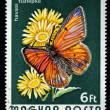HUNGARY - CIRCA 1974: A Stamp printed in Hungary shows butterfly, circa 1974 - Stock Photo