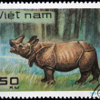 VIETNAM - CIRCA 1982: A stamp printed in Vietnam shows Rhinoceros, series, circa 1982 — Stock Photo