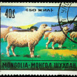 MONGOLIA - CIRCA 1971: A stamp printed in Mongolia shows sheeps, circa 1971 - Stock Photo