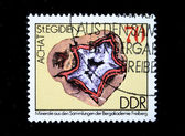 DDR - CIRCA 1985: A stamp printed in DDR (East Germany) shows semiprecious stone Achat, circa 1985 — Stock Photo