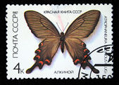 USSR - CIRCA 1986: A stampp printed in the USSR shows butterfly Atrophaneura Aicinous, series, circa 1986 — Stock Photo