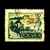 Polonia - circa 1954: batalla de studzianki, circa 1954 muestra un sello impreso en polonia — Foto de Stock