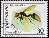 VIETNAM - CIRCA 1980s: A stamp printed in Vietnam shows insects, series, circa 1980 — Stock Photo