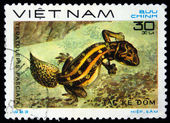 VIETNAM - CIRCA 1983: A stamp printed by Vietnam shows lizard Carrot-tail Viper Gecko - Teratolepis fasciata, stamp is from the series, circa 1983 — Stock Photo