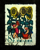 CHINA - CIRCA 1957: A stamp printed in China shows children under the sunflowers, circa 1957 — Stok fotoğraf