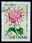 "VIETNAM - CIRCA 1978: A stamp printed in the Vietnam shows flower - ""Chrysanthemum sp."", circa 1978 — Foto de Stock"