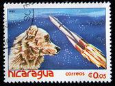 Nicaragua - intorno al 1982: un timbro stampato in nicaragua illustrato laika cane-cosmonauta, intorno al 1982 — Foto Stock