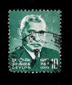 CEYLON - CIRCA 1960s: A stamp printed in Ceylon (present time Sri Lanka) shows Don Stephen Senanayake Prime Minister of Ceylon, circa 1960s — Stock Photo