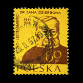 POLAND - CIRCA 1957: A stamp printed in Poland shows Dr Jana Dzierzona, circa 1957 — Stock Photo