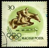 Ungheria - intorno al 1956: un timbro stampato in ungheria spettacoli equestre, intorno al 1956 — Foto Stock