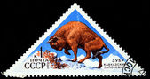 USSR - CIRCA 1973: A stamp printed in the USSR shows European bison - Bison bonasus, circa 1973 — Stock Photo