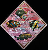 Republic of Burundi, - CIRCA 1975: A stamp printed by Burundi shows the fishes: Priacanthus Arenantus, Pomacanthus Arcuatus, Zeus Faber, Scarus Guacamaia, series, circa 1975 — Stock Photo