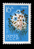 "USSR - CIRCA 1964: A stamp printed in USSR (Russia) shows a agricultural crop with inscription ""Flax (Linum usitatissimum)"", from the series ""Agricultural crops bred by Soviet scientist — Foto de Stock"