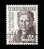 CZECHOSLOVAKIA - CIRCA 1960s: A stamp printed in Czechoslovakia shows Franz Josef von Gerstner, circa 1960s — Stock Photo