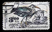 CZECHOSLOVAKIA - CIRCA 1980s: A stamp printed in Czechoslovakia shows Grey Heron - Ardea cinerea, circa 1980s — Foto de Stock