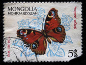 KOREA - CIRCA 1988. Postage stamps had been printed in Korea. Depicted on a postage stamp (Loxia Linnaeus) - genus of birds of the family finches , passerine (Latin: Passeriformes), circa 1988 — Stock Photo